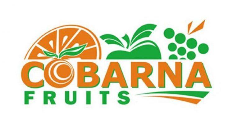 Teléfono Cobarna Fruits